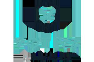 300x200_votiva_logo